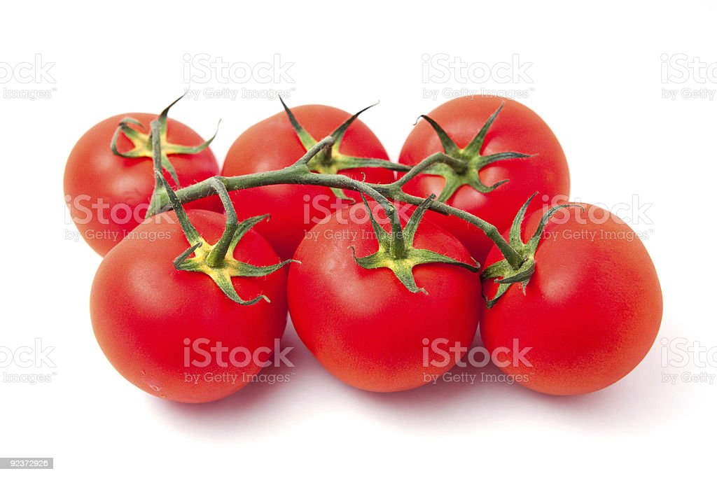 Juicy tomatoes stock photo