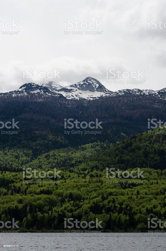 Julian Alps from Lake Bohinj stock photo
