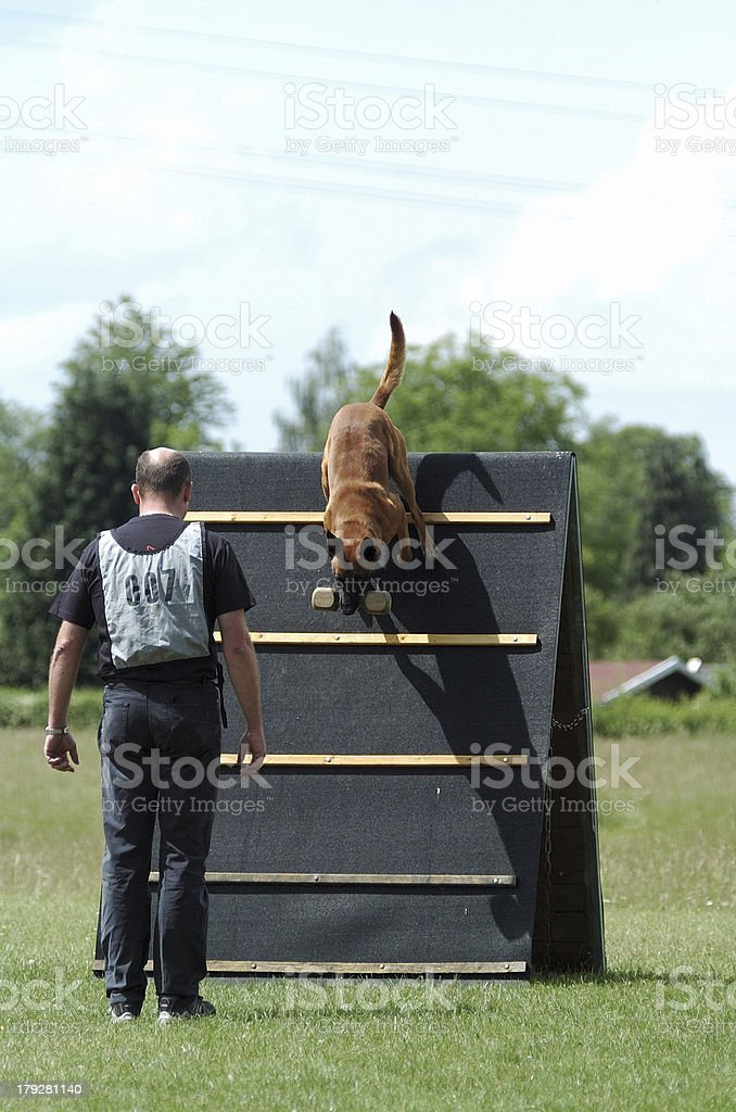 jump over wooden hurdle royalty-free stock photo