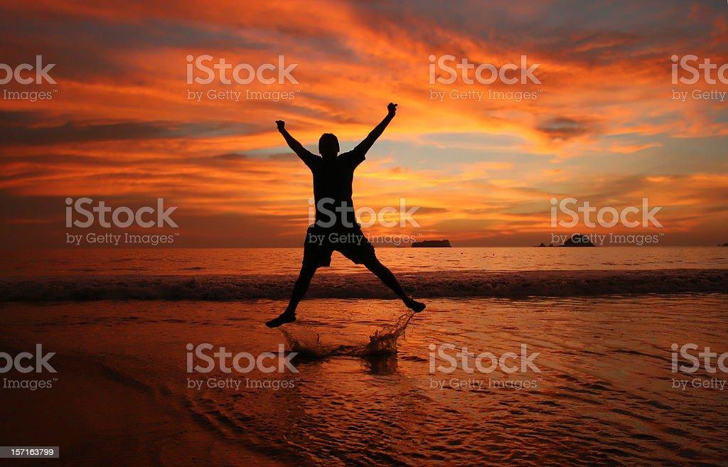 Jumping for Joy royalty-free stock photo