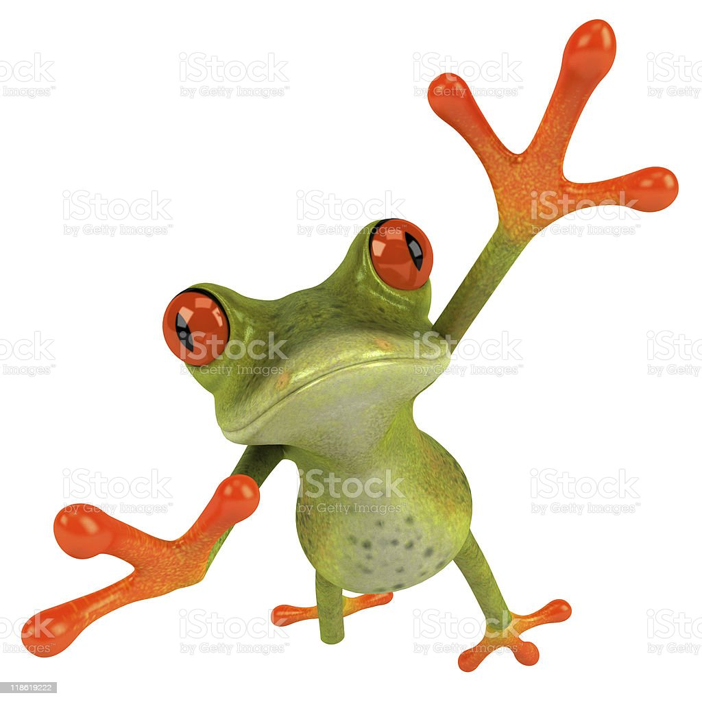 Jumping frog stock photo