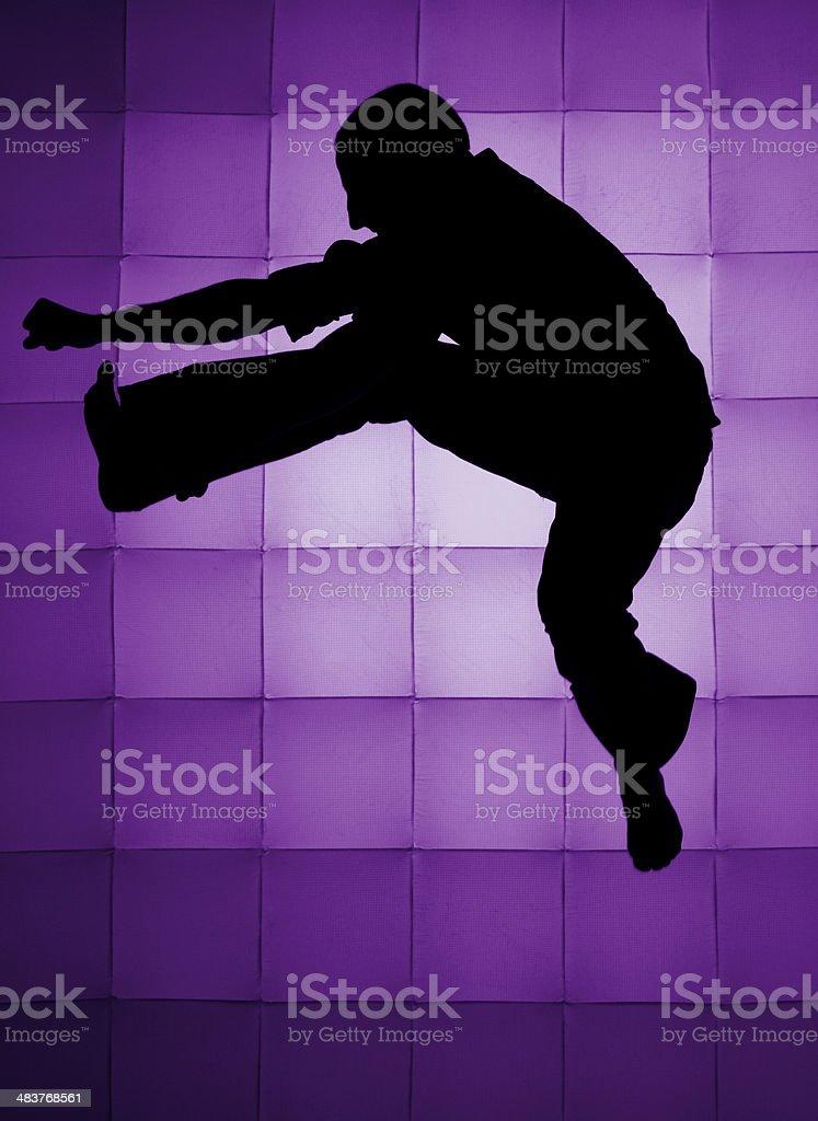 Jumping Kick royalty-free stock photo