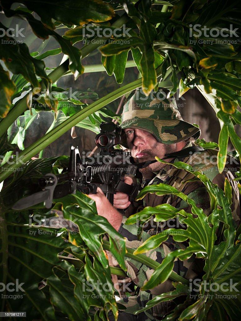 Jungel Warfare stock photo