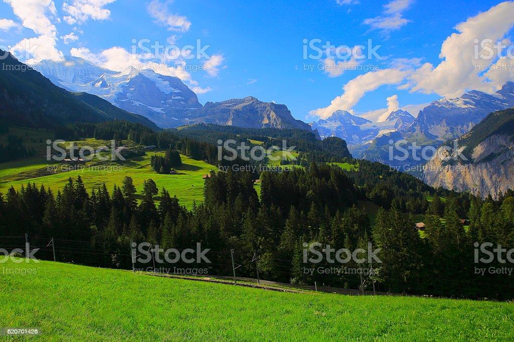 Jungfrau, Alpine Landscape: woodland and meadows, Lauterbrunnen, Swiss Alps stock photo