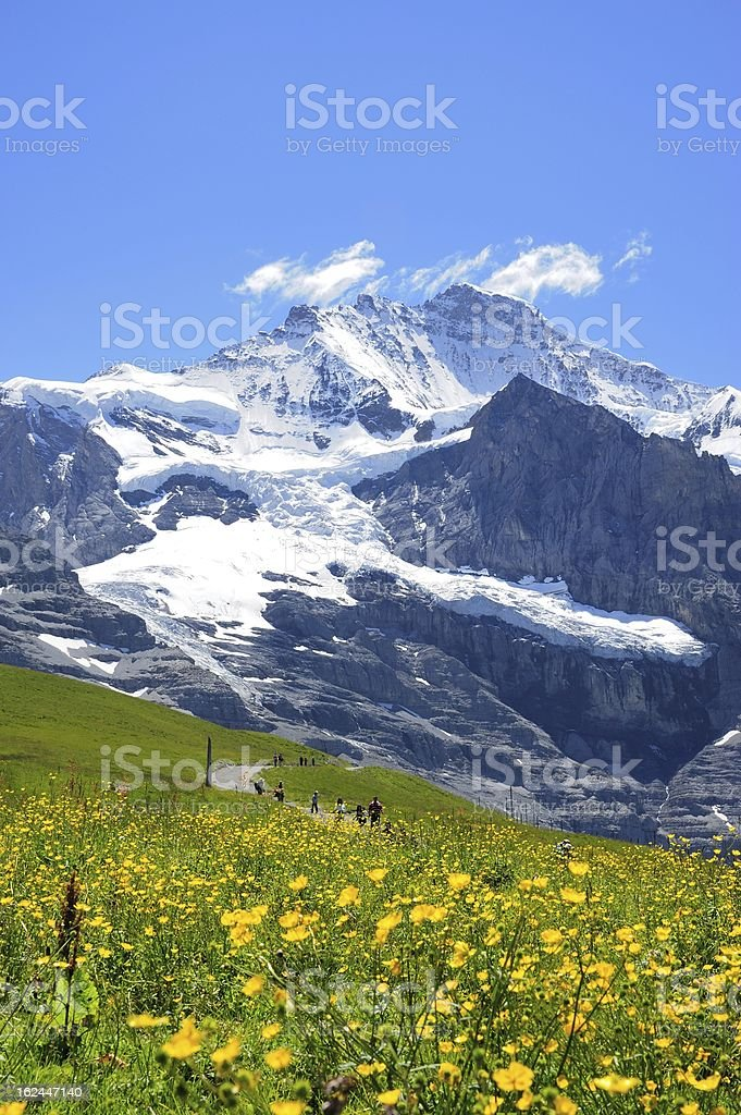 Jungfrau with yellow flower stock photo