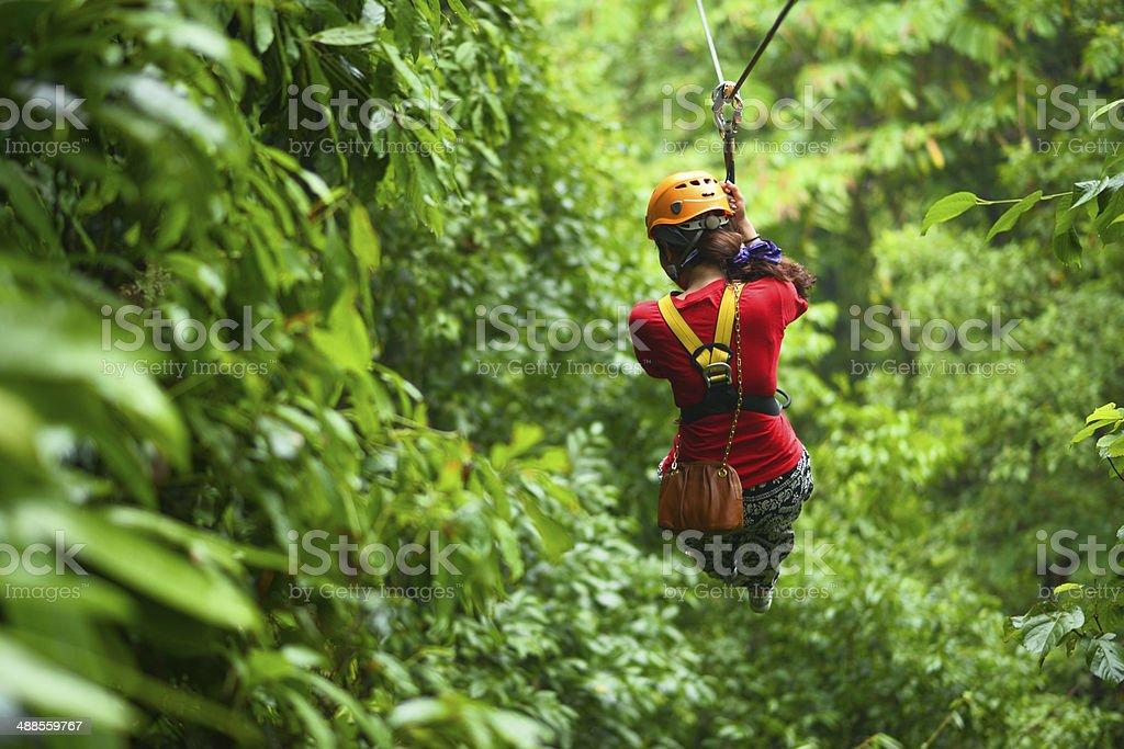 Jungle Adventure stock photo