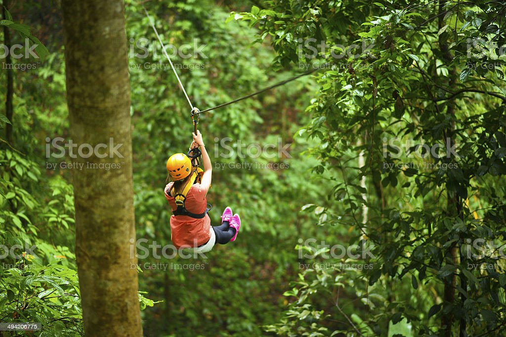 Jungle Adventure stock photo