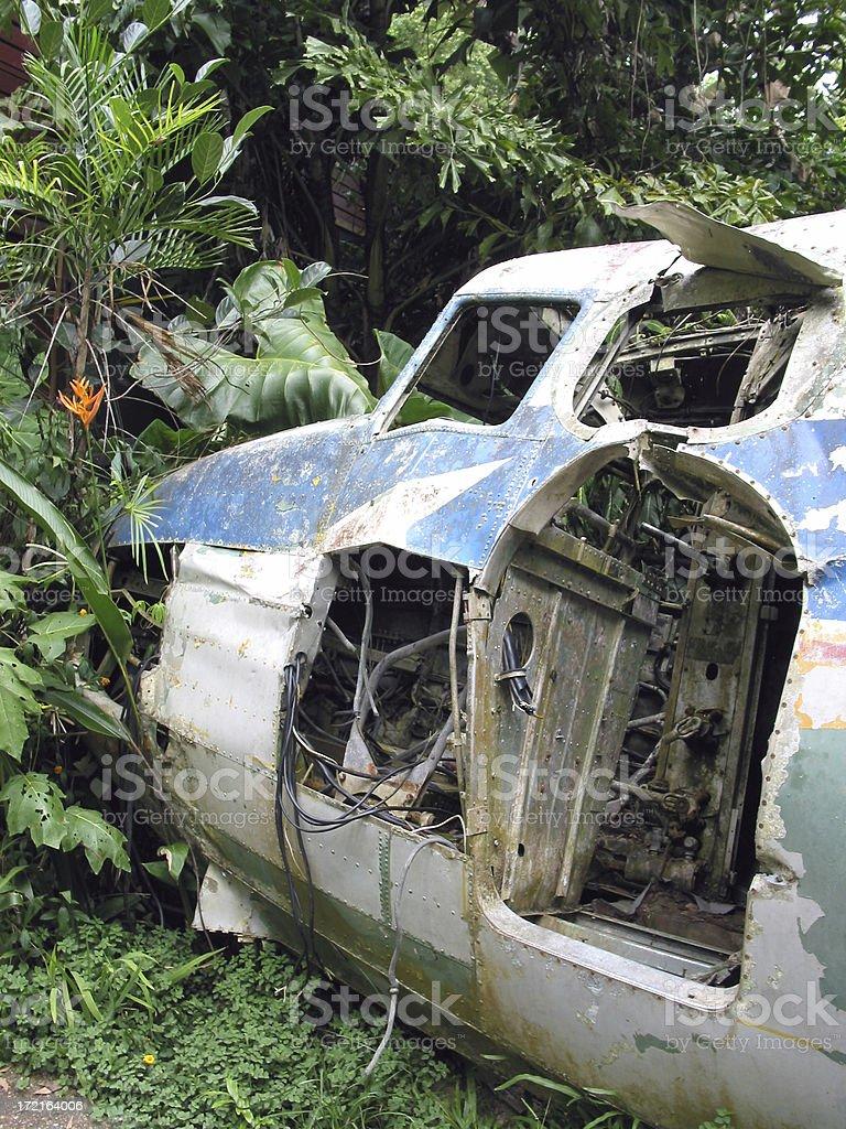 Jungle Aircraft Wreck stock photo