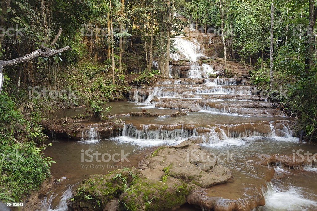 Jungle and waterfall royalty-free stock photo