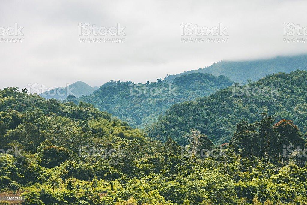 Jungle hills. stock photo