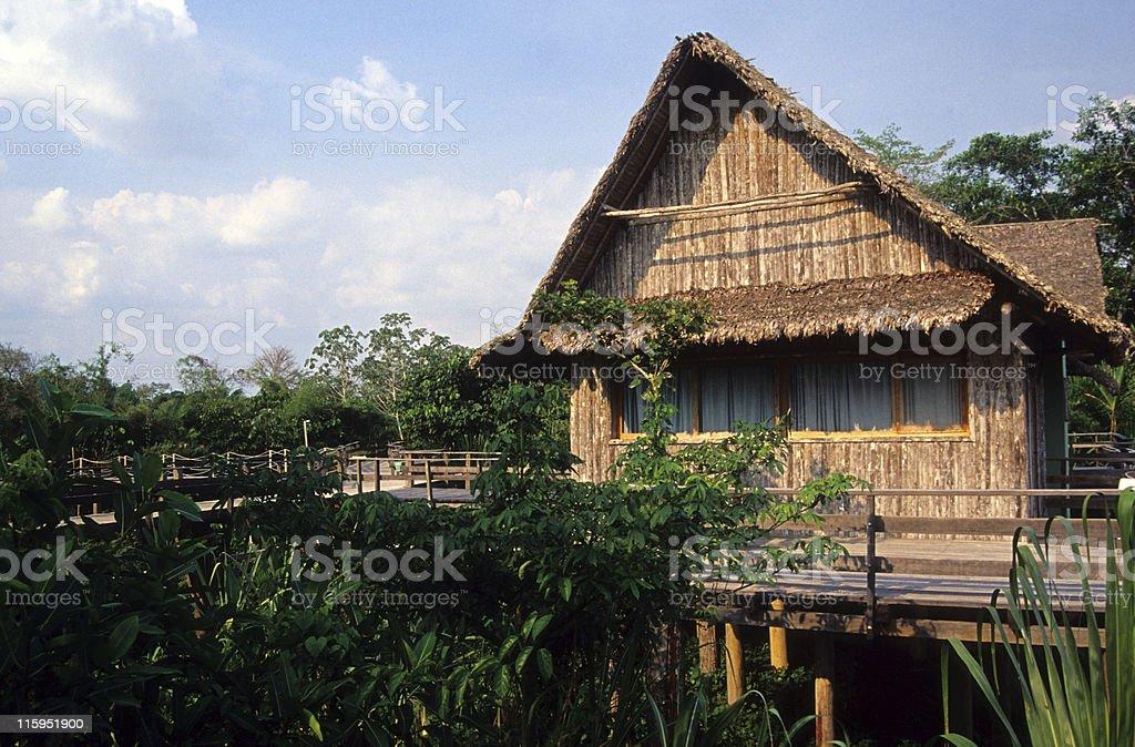 Jungle hotel royalty-free stock photo