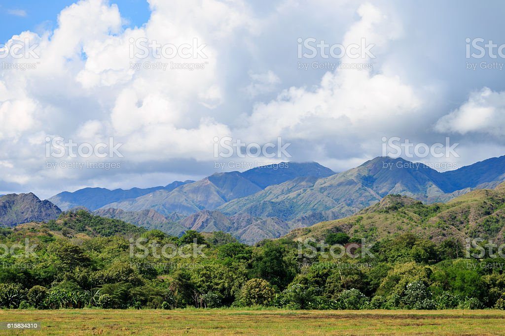 jungle in colombian green mountains, colombia, latin america stock photo