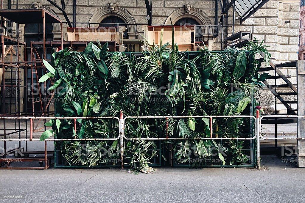 Jungle in the City stock photo