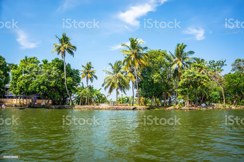 Jungle of Kerala backwaters - a chain of brackish lagoons stock photo