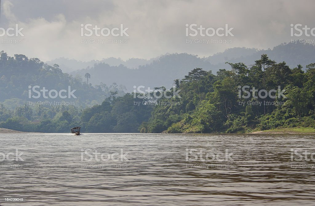 Jungle river cruise royalty-free stock photo