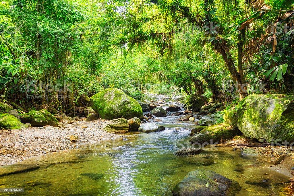 Jungle River in Sierra Nevada Mountains Colombia near Ciudad Perdida stock photo