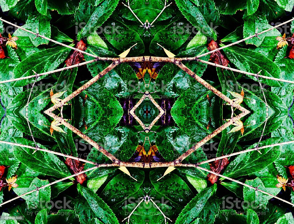 Jungle themed abstract background royalty-free stock photo