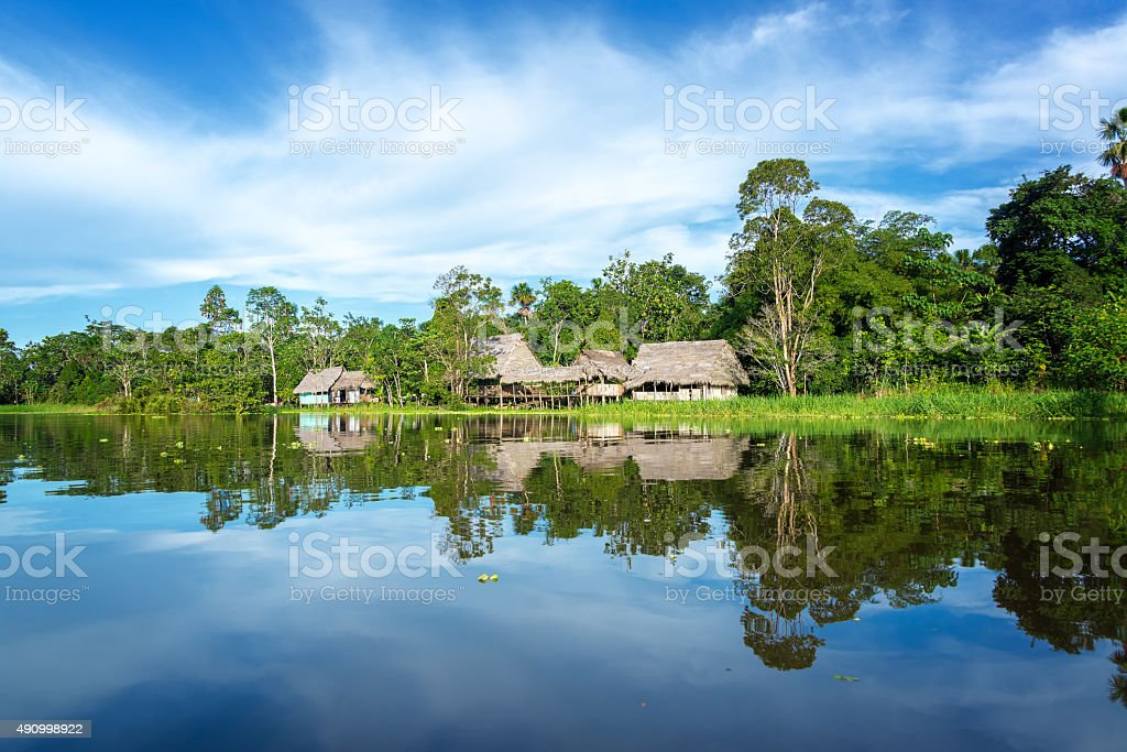 Jungle Town Reflection stock photo