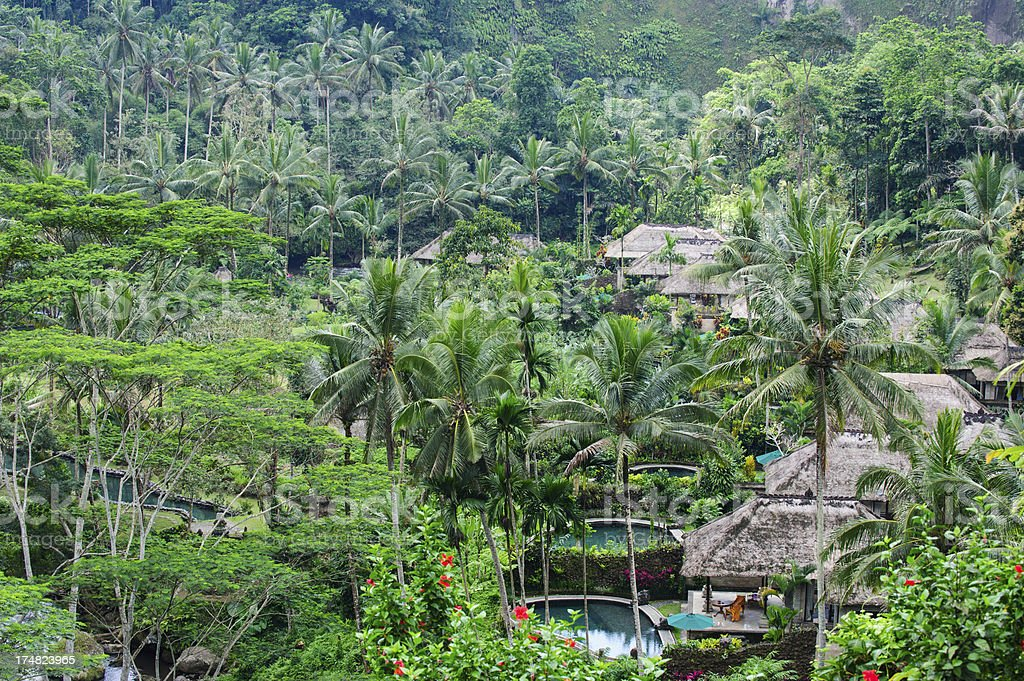 Jungle Villas royalty-free stock photo