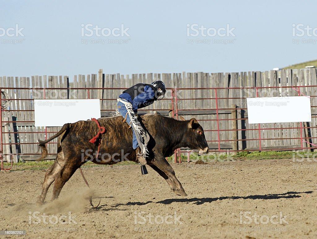 Junior Bull Rider royalty-free stock photo