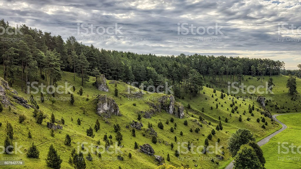 Juniper Slopes in Kleinziegenfeld Valley in Germany royalty-free stock photo