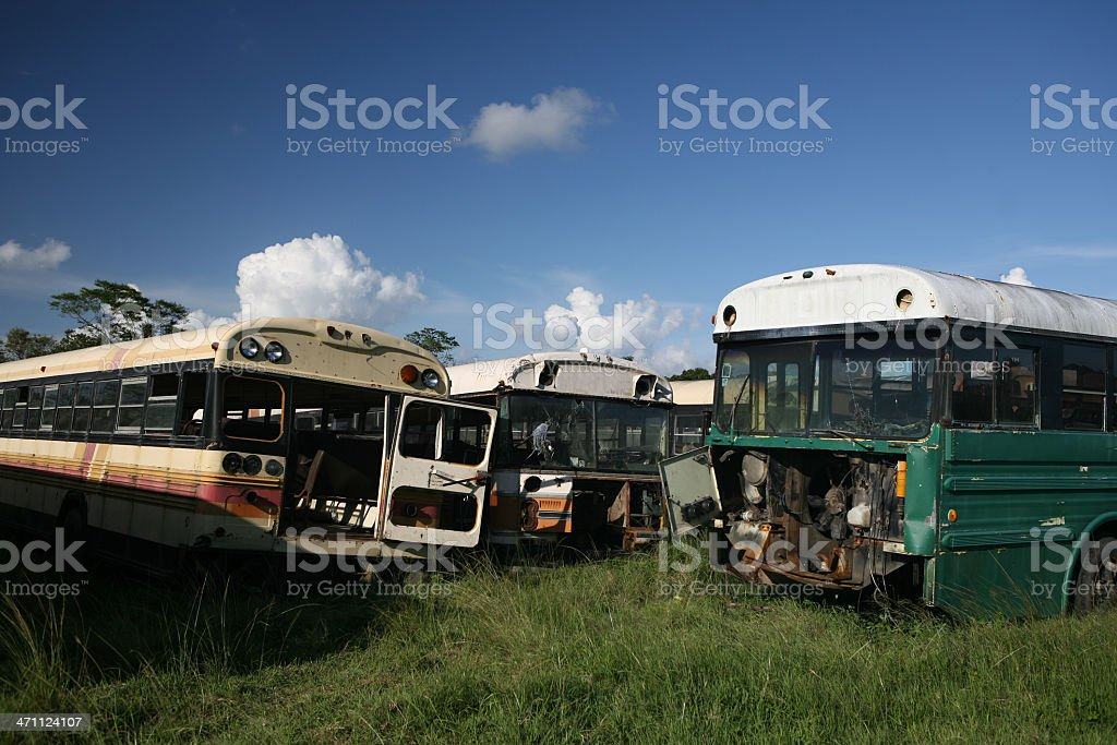 junkyard of old school buses royalty-free stock photo