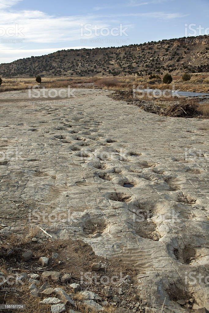 Jurassic sauropod dinosaur tracksite Purgatoire River Colorado vertical stock photo