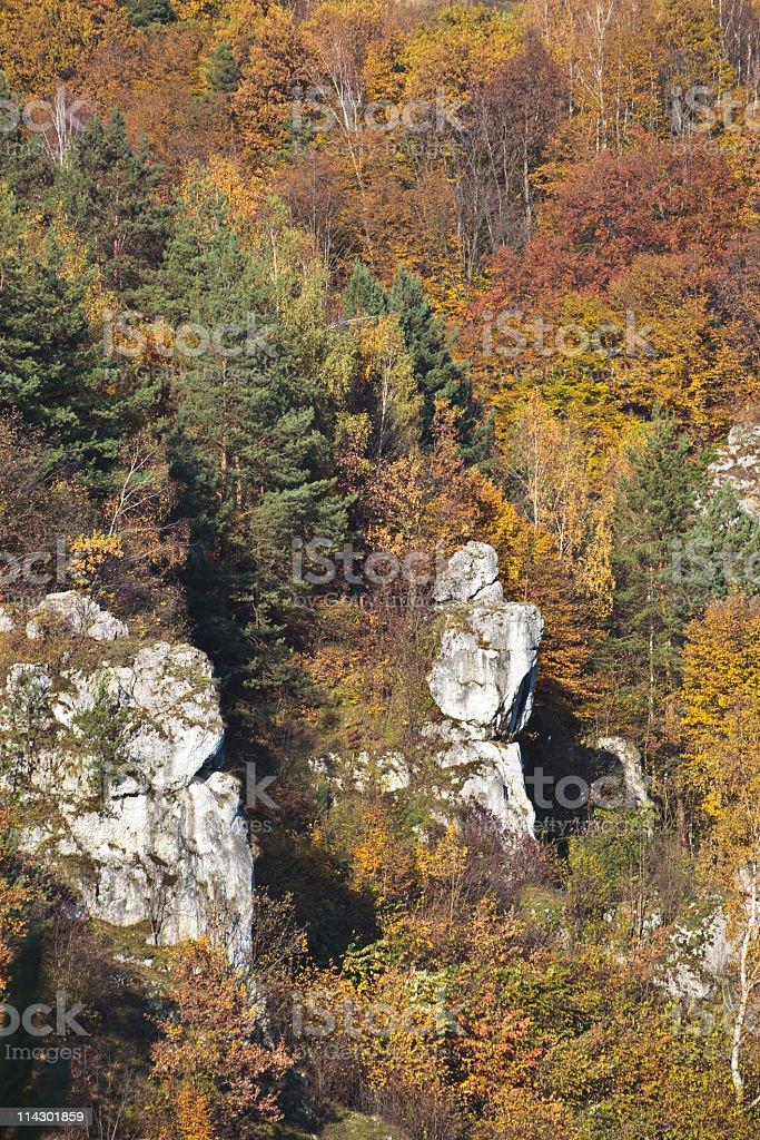 Jurrasic valley stock photo