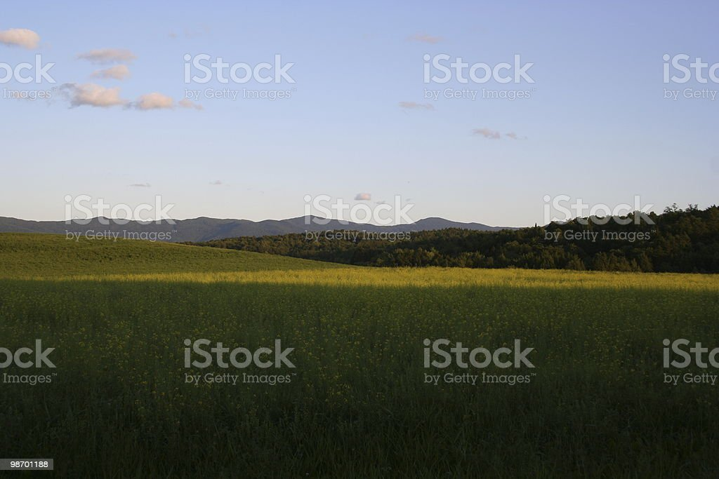 Just before a summer sunset royalty-free stock photo