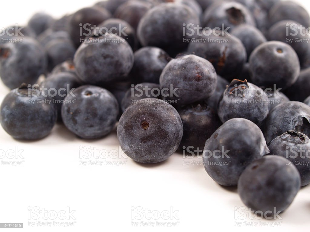 Just Blueberries stock photo