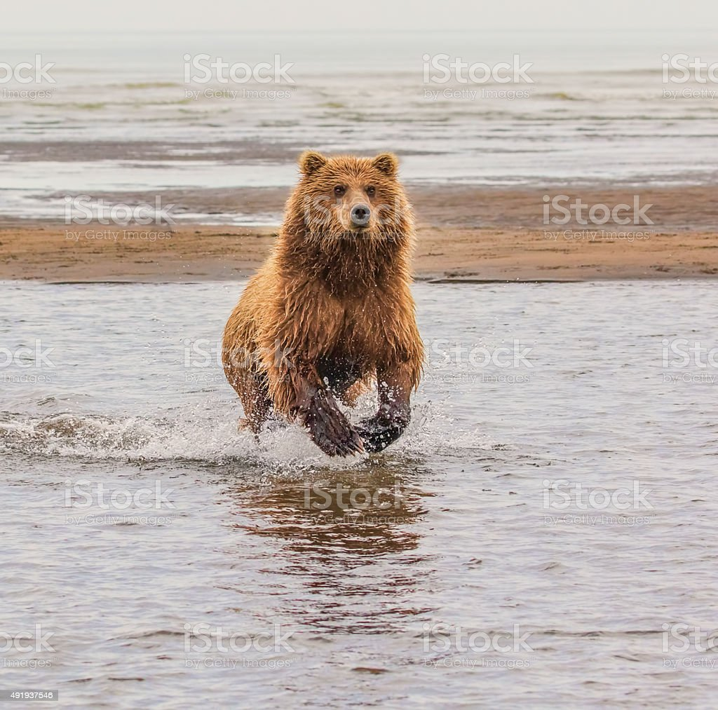 Just Fishing stock photo