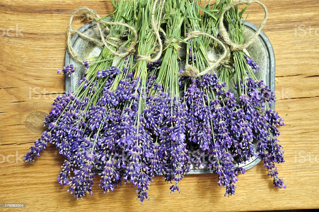 Just harvested lavender royalty-free stock photo