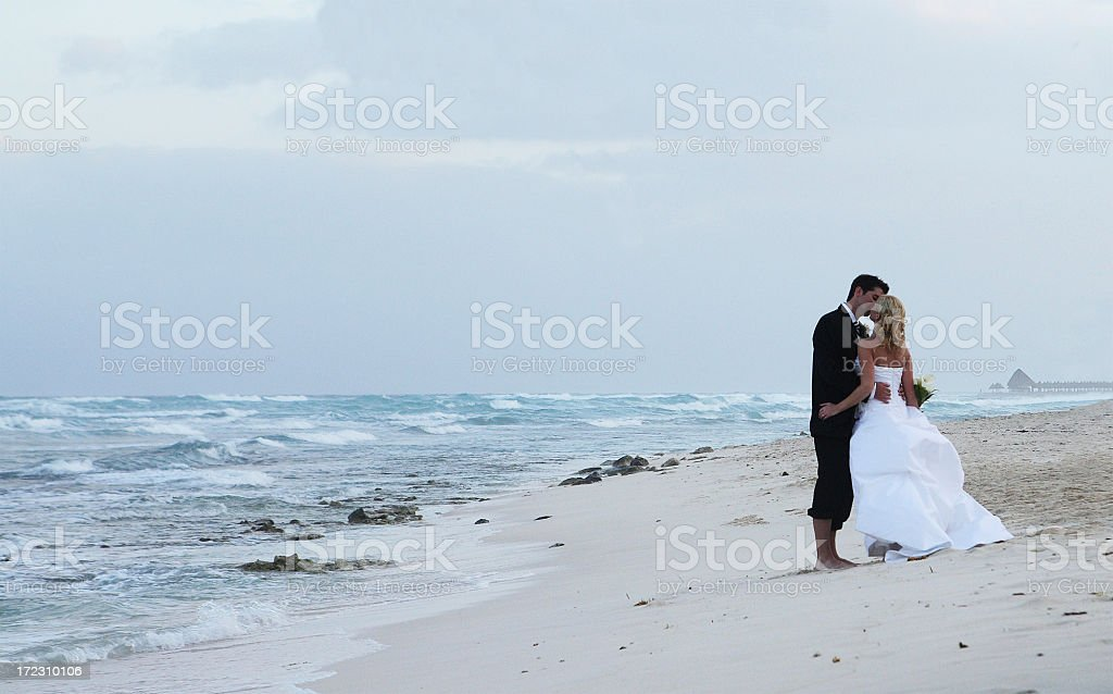 Just married couple kissing royalty-free stock photo