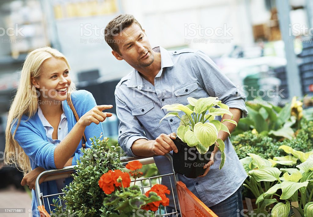 Just one more plant! royalty-free stock photo