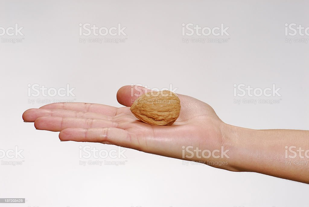 Just one nut. stock photo