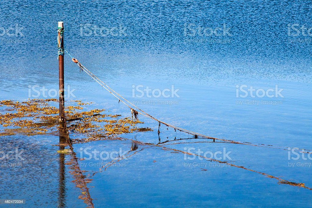 Kabelvag, a net stock photo