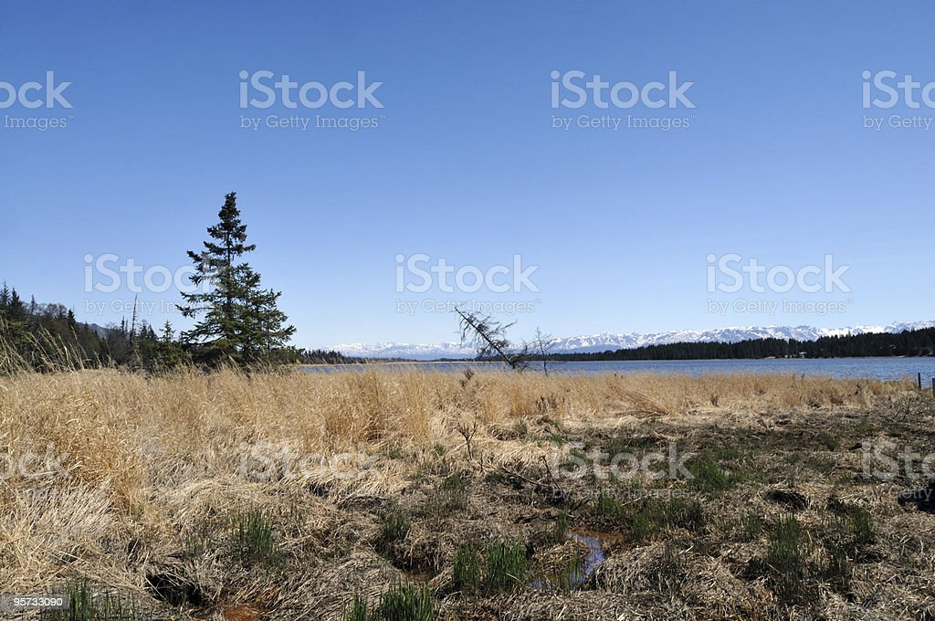 Kachemak Bay Homer Alaska stock photo
