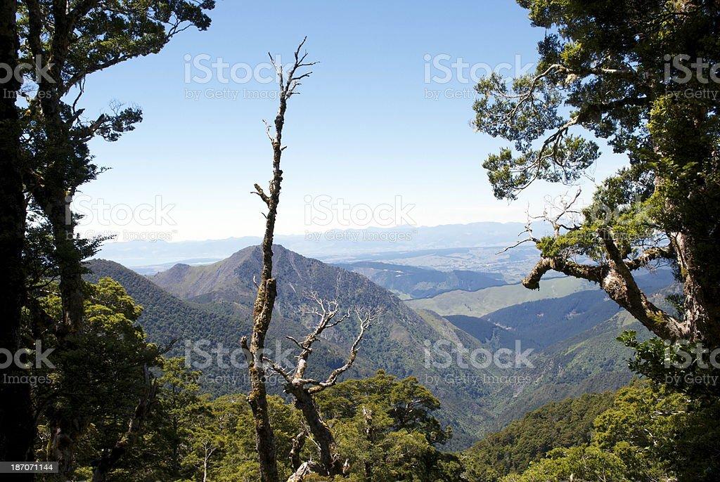 Kahurangi National Park View from Mt Arthur, Motueka royalty-free stock photo