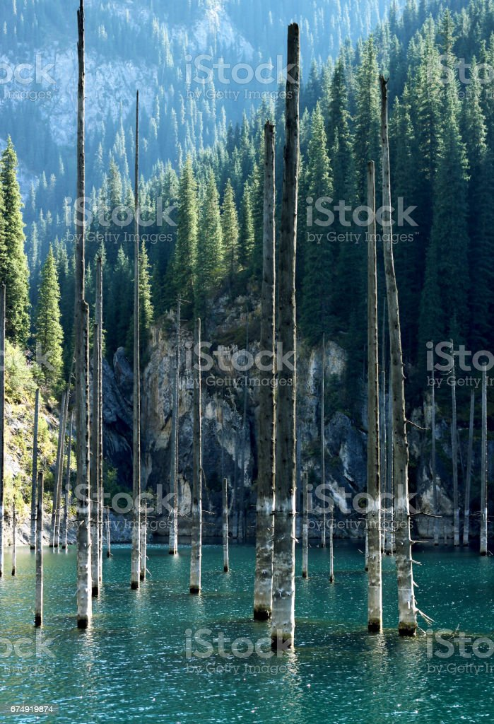 Kaindy Lake with birches in Tien Shan mountain, Akmaty, Kazakhstan. stock photo