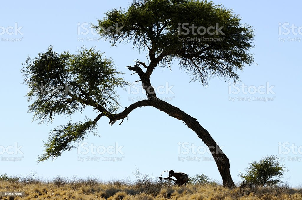 Kalahari bushman stalking prey horizontal stock photo