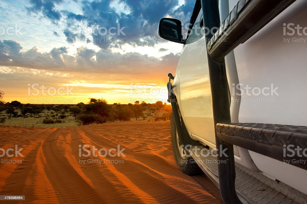 kalahari safari stock photo