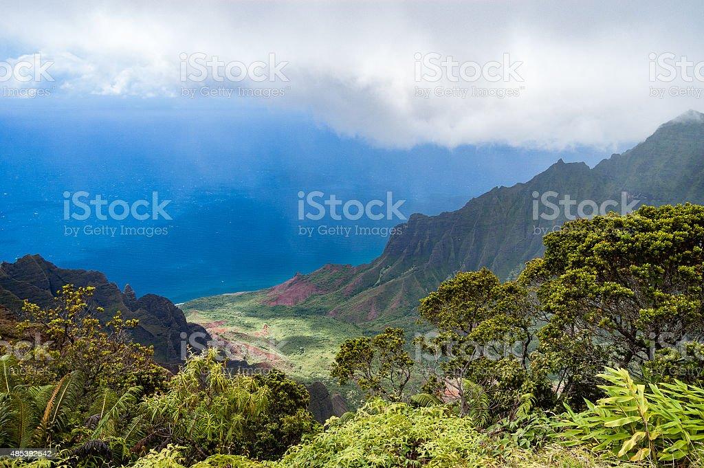 Kalalau lookout in Koke'e State Park - Kauai, Hawaii stock photo