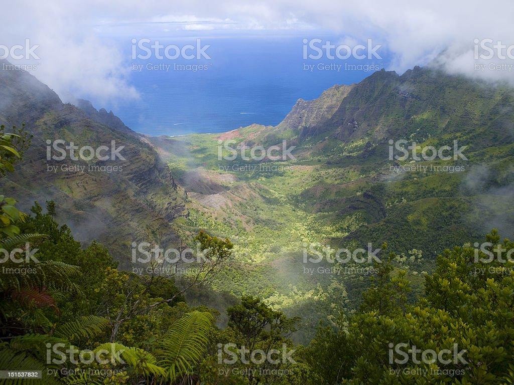 Kalalau Valley from Pihea Trail stock photo