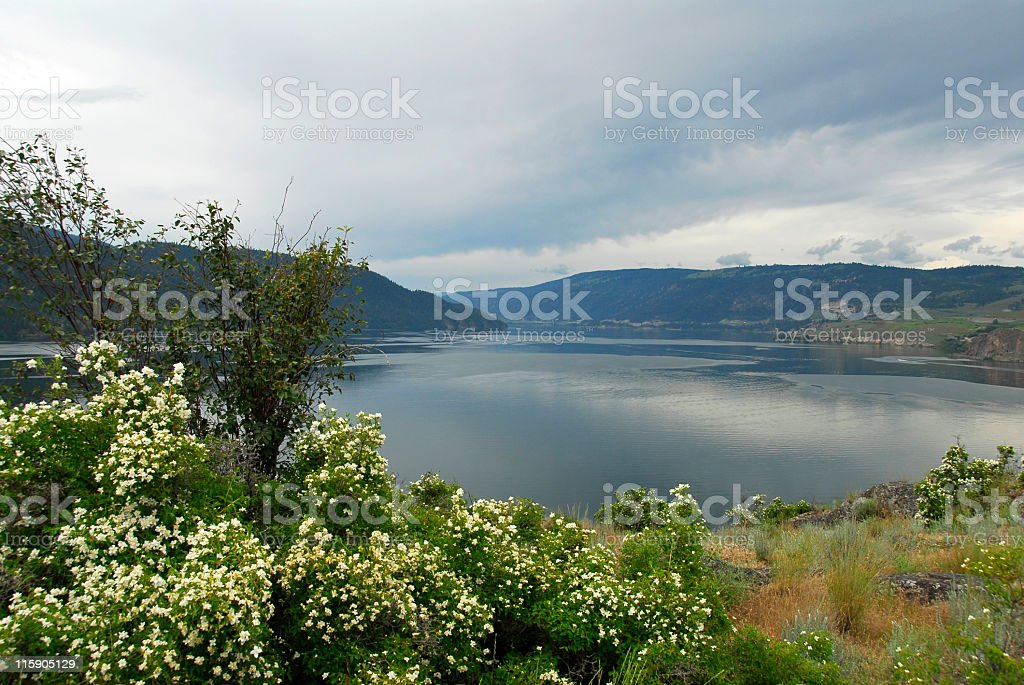 Kalamalka Lake royalty-free stock photo