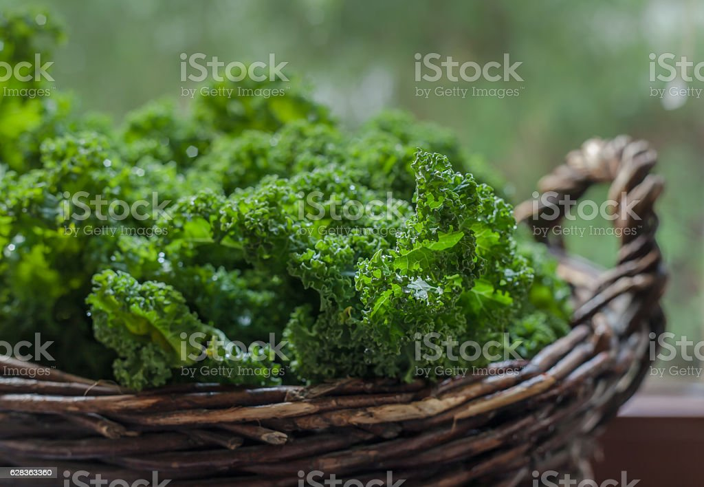 Kale in rustic basket on daylight  close Up stock photo