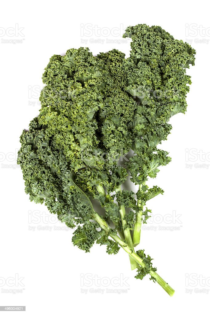 Kale Isolated stock photo