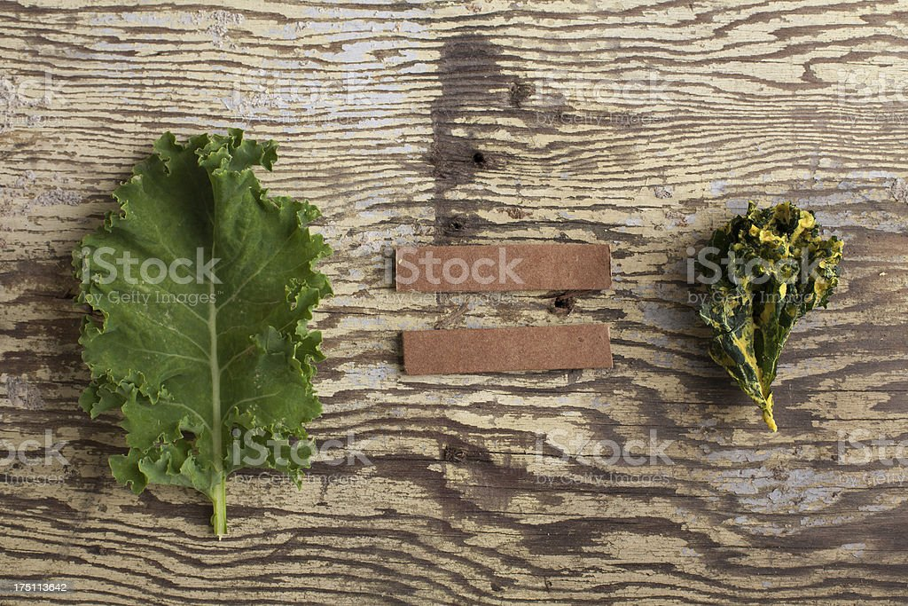Kale leaf and chip on weathered wood royalty-free stock photo