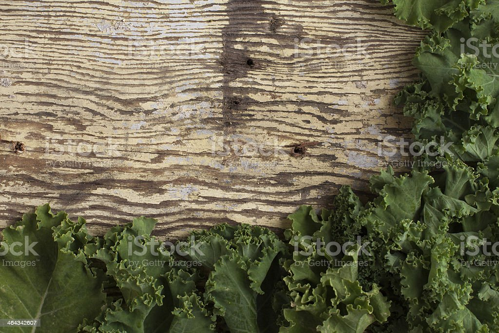 kale leafs along the bottom and right image border stock photo