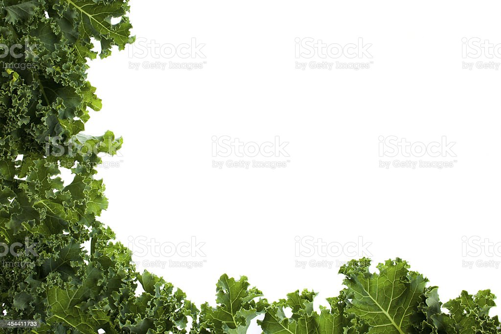 Kale leafs covering two side of the image royalty-free stock photo
