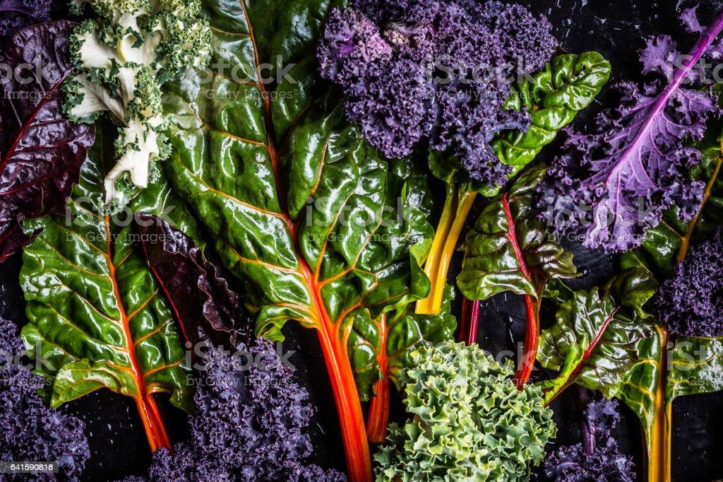 Kale Vegetable Varieties stock photo